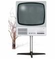 Телевизор Braun FS80